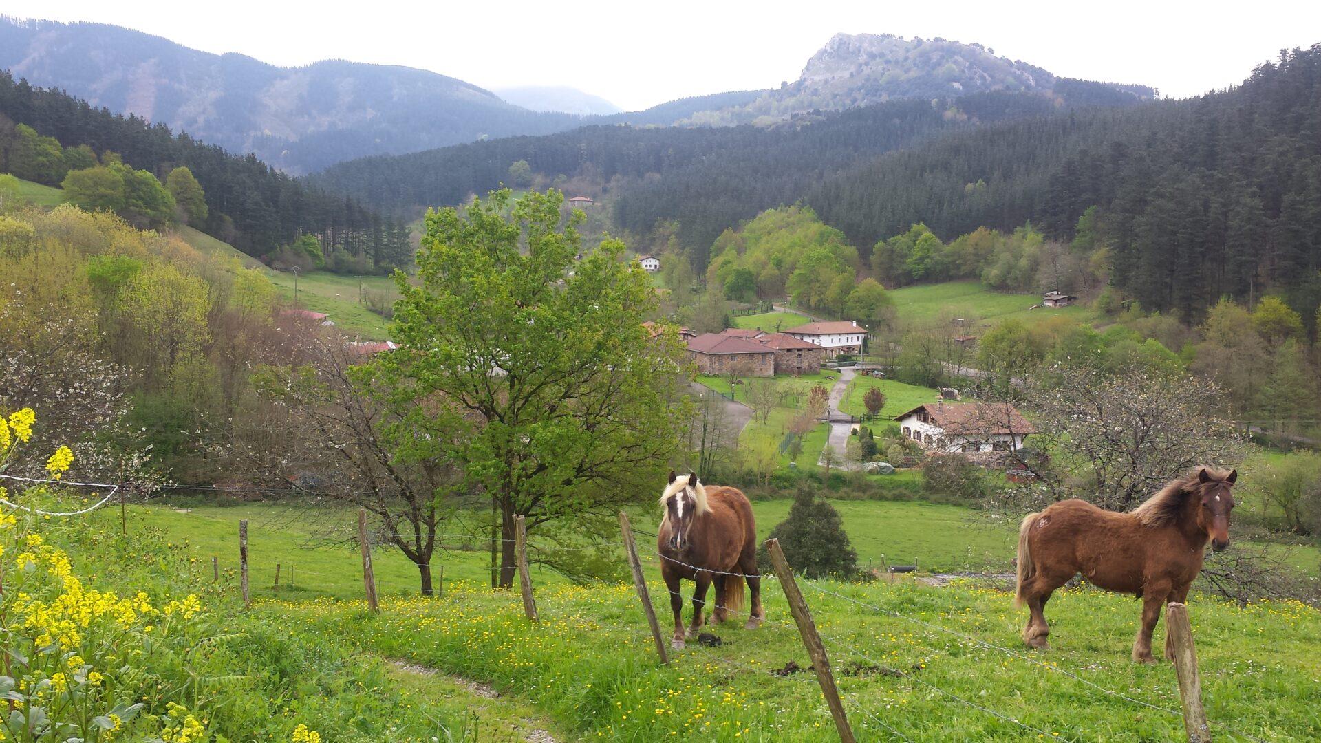 Euskadi deskonecta - Caserios pais vasco ...