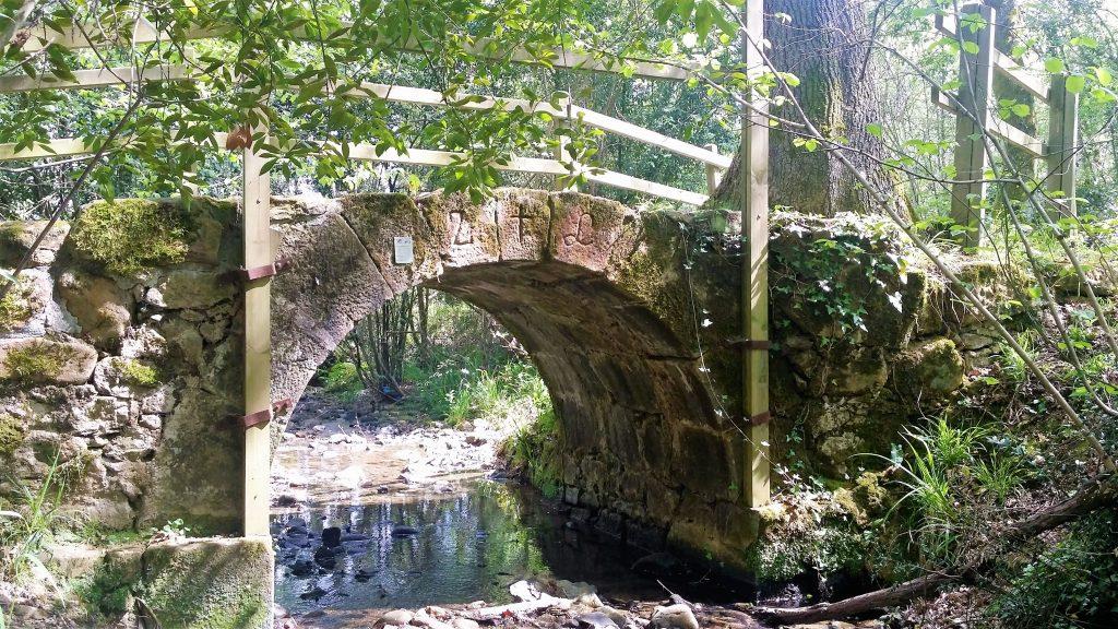 puente-arikondo-en-senda-oxinaga